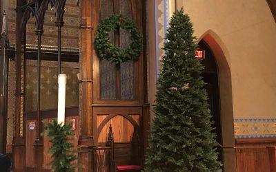 Greening of the Church, Dec. 1
